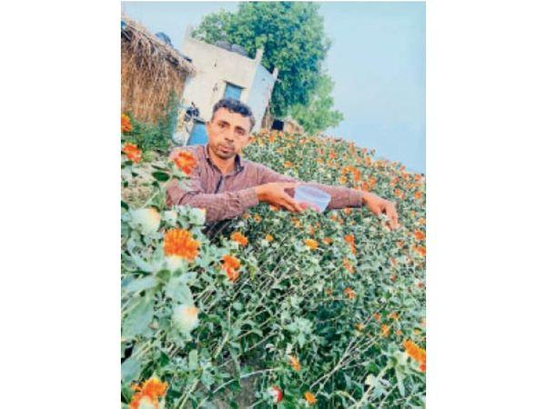 farmers-gannaur-earning-strawberries